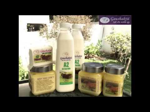 Gir cow VEDIC ghee & A2 milk | AK Organic Farm Pune | 7798894363
