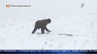 Жители Туркестанской области требуют восстановить столбы электроснабжения, которые разрушились