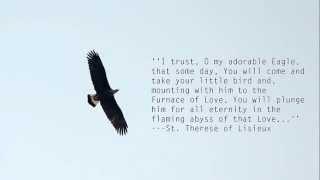 On Eagle