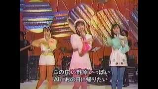 【HD】 Mi-Ke/白い2白いサンゴ礁 (1992年) <生歌フルコーラス歌詞付>