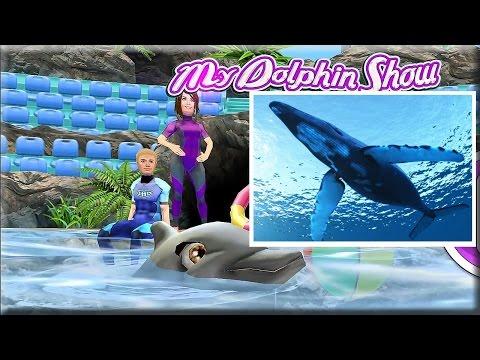 Игры про дельфинов - Ярославский дельфинарий