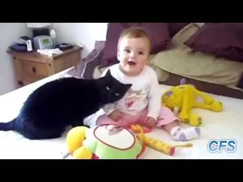 Приколы с котами, прижки, нападения, кувырки