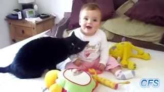 Коты и дети шикарная подборка ! Коты и дети супер позитивной видео !!!