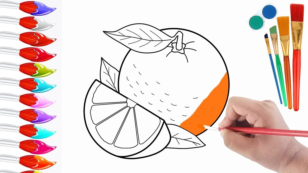 how to draw fruits orange orange coloring pages for kids
