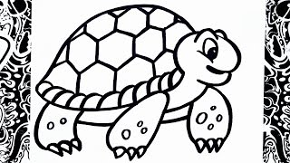como dibujar una tortuga | how to draw turtle