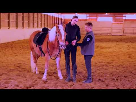 Art2Ride Associate Trainer Program: Joan Teaches Work In Hand