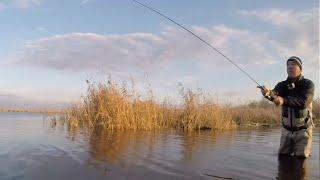 Зимний спиннинг! Ловля рыбы В ХОЛОДНОЙ ВОДЕ