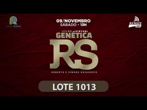 LOTE 1013