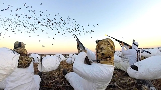 One of FLAIR's most viewed videos: 8 MAN LIMIT!!! EPIC Goose Hunting in Kansas 2017