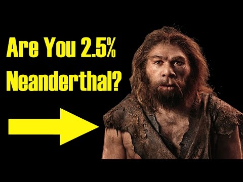 Are You Related to Neanderthals?