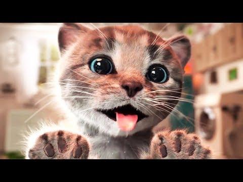 ПРИКЛЮЧЕНИЕ МАЛЕНЬКОГО КОТЕНКА мультик смешное видео для детей мультфильм про котиков #ММ
