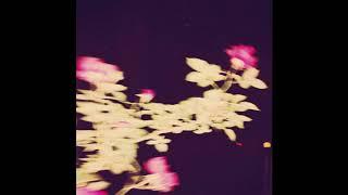 "Frank Ocean Type Beat 2018 - ""BERRY"""