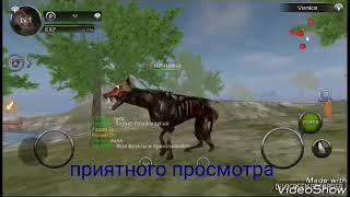 Обзор игры зомби собаки 2