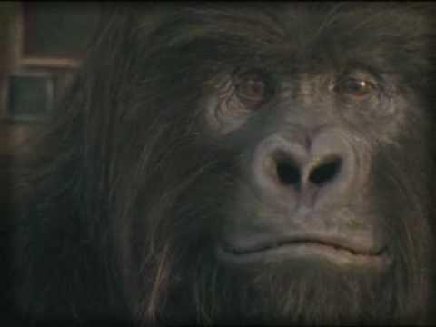 "FILM VIRAL - ""KING KONG"" - BURN DAY (Coca-Cola Group)"