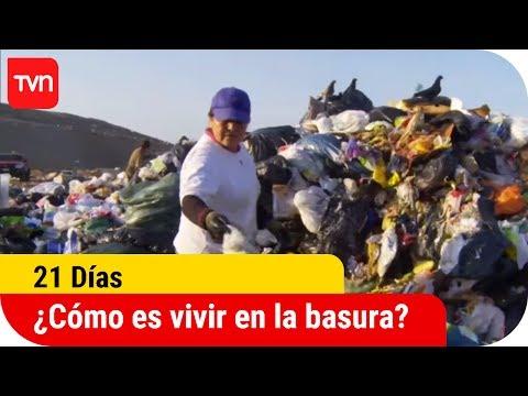 ¿Cómo es vivir y trabajar en la basura? | 21 días