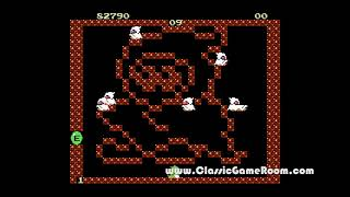 Classic Game Room - BUBBLE BOBBLE review for NES