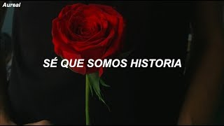 OneRepublic - Somebody To Love (Traducida al Español)