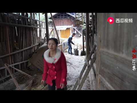 【小江视频】农村的羊都是放山上养,姑娘说杀一头过年,这样的羊肉你喜欢吃吗