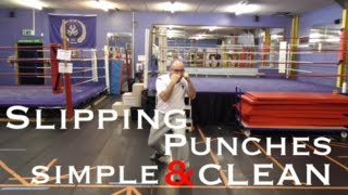 Slipping Punches Like a Boxing Demon!