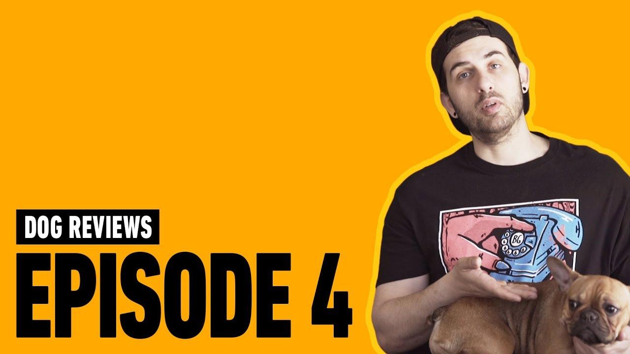 Borgore Reviews French Bulldog, Sade! Episode 4