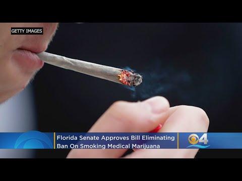 Florida Senate Approves Bill Eliminating Ban On Smoking Medical Marijuana – Local News Alerts