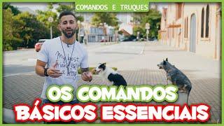 Como utilizar os comandos essenciais na rua