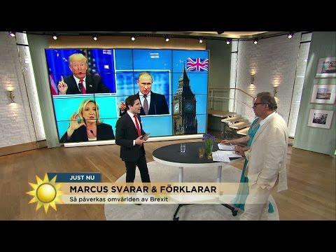 Marcus Oscarsson: De gynnas av valresultatet i Storbritannien - Nyhetsmorgon (TV4)