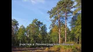 Купить участок недорого в Ленинградской области. Загородная недвижимость.(, 2015-11-18T13:07:24.000Z)