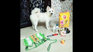 How to make pedigree for puppy || HINDI ||