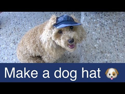 Make Dog Visor Hat-Cap-DIY Dog Food/Groom/Clothes - A Tutorial By Cooking For Dogs