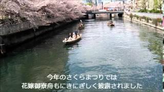 2014お江戸深川さくらまつり公式紹介ビデオby深川観光協会