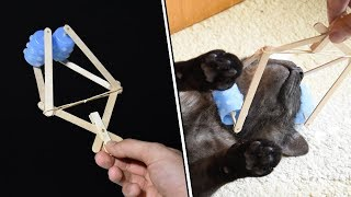 5 LIFE HACKS for CATS - Your cat will LOVE YOU EVEN MORE!