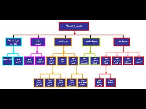 كيفية عمل هيكل تنظيمي لشركة thumbnail