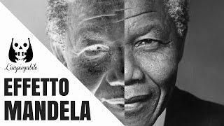 Effetto Mandela: un mistero o esiste una spiegazione?