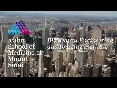 Zooming Towards Progress: Alan Seifert, PhD