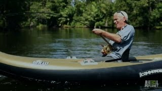 Showdown with a Tarpon Killer Torpedo | River Monsters