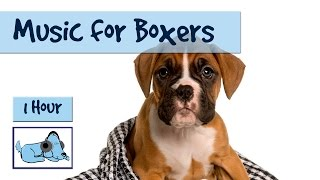 Download Video Music for Boxers! Boxer Dog Music, Calm Your Boxer Dog, Relaxing Music for Hyper Boxers MP3 3GP MP4