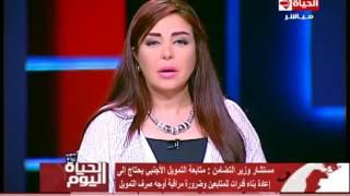 فيديو.. «التضامن»: 48 ألف جمعية أهلية و75 منظمة دولية في مصر