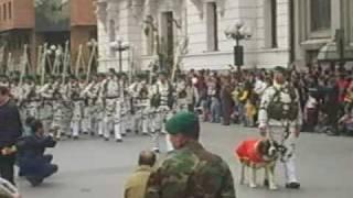 Parada militar ejército nº 16 TALCA