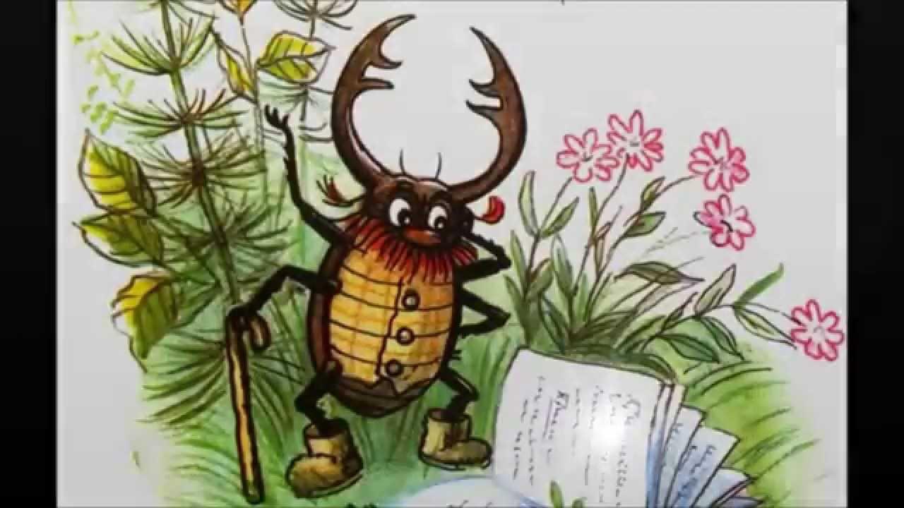 байкале всегда сказочный жук буквоед картинки нужно