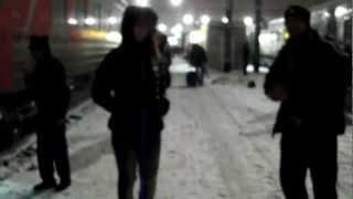 Видео для Шатова, с Тюменской Лисицей
