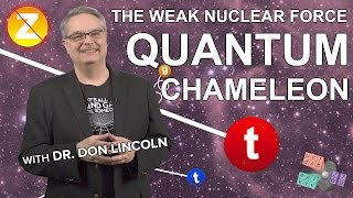 The Weak Nuclear Force: Quantum Chameleon