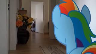 Скачать Пони в реальном мире книга Рэйнбоу