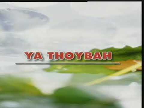 Ya Thoybah Haddad Alwi Sulis
