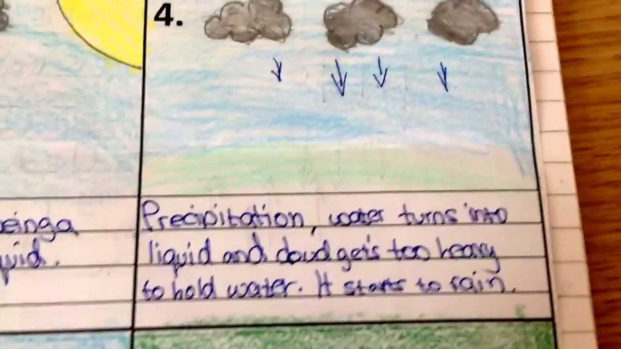 The Six Stages of The Water Cycle (Hydrological) - YouTube