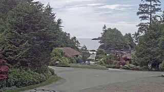 Preview of stream Beachview cam in Crystal Cove Beach Resort, BC, Canada