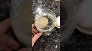Osmosis - Vinegar comp