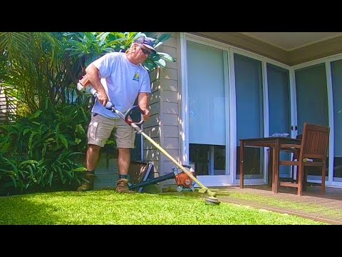 Line Trimming A Small Backyard No Lawn Mower Required