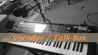Vocoder / Talk-Box