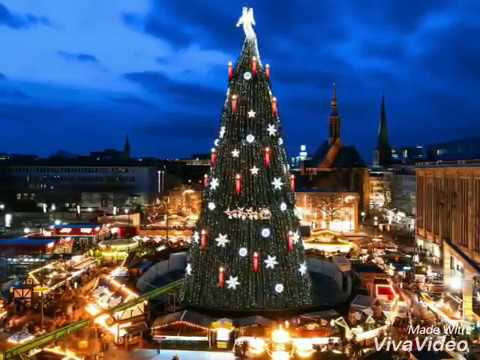 Tallest Christmas Tree In The World - YouTube